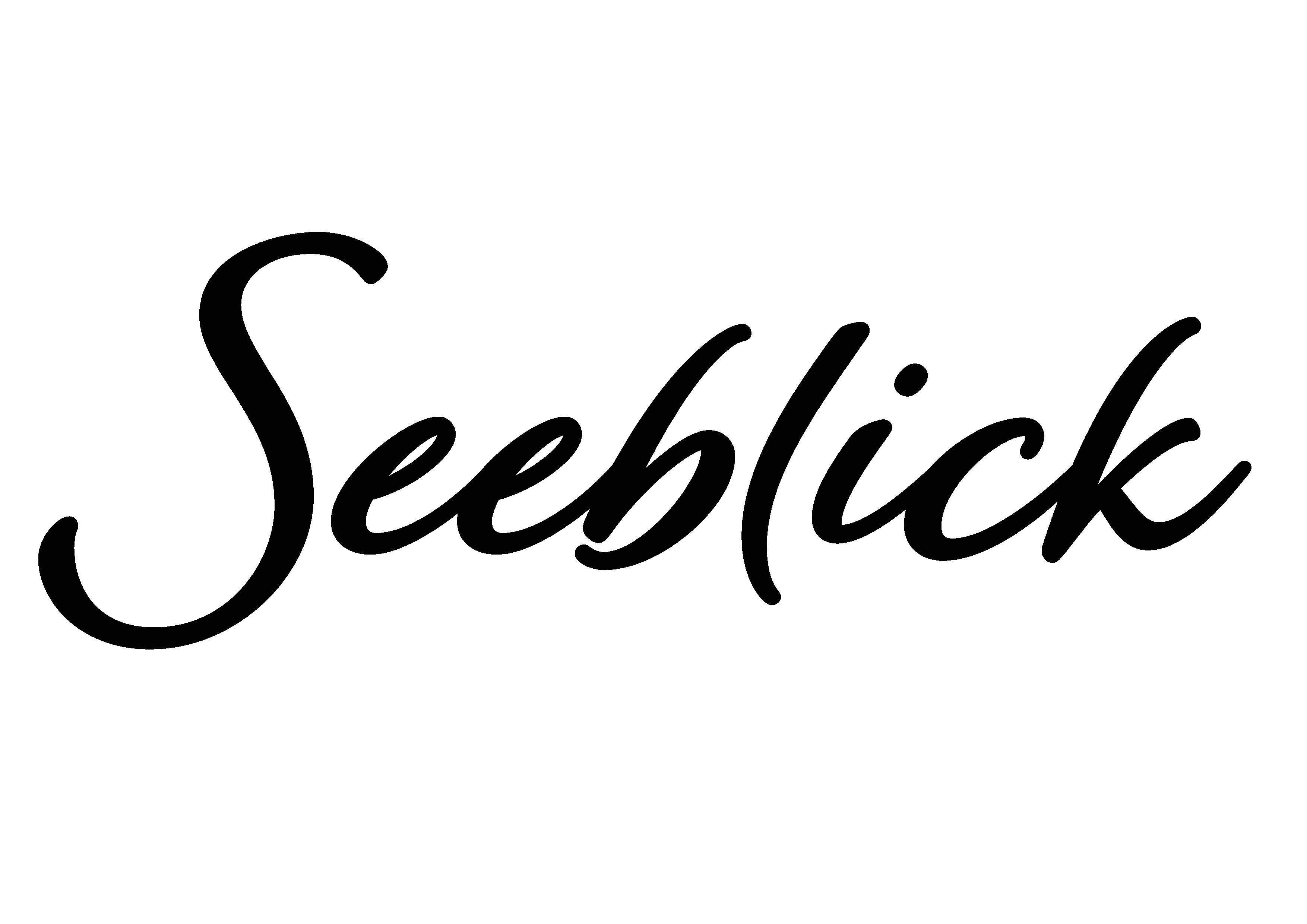 2021-02-04_601bf4594fb21_Seeblick_Logo_schwarz-auf-transparent